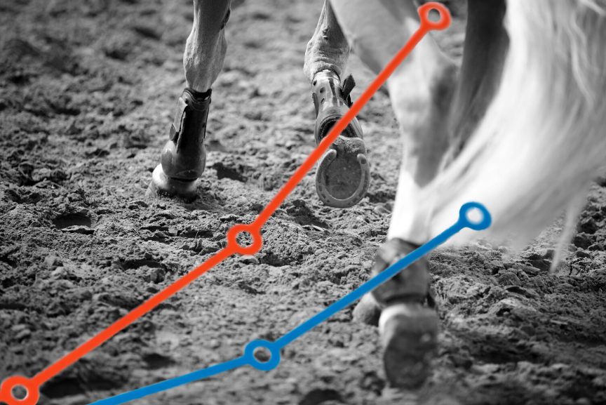 Horse in Arena EquiRatings Equestrian Eventing Horse Sport Data Analysis and Team Performance
